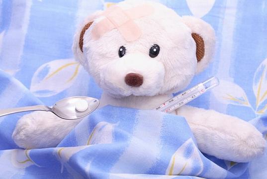 bébé ours malade