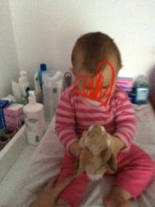 doudouce lapin