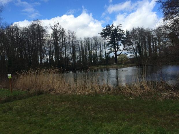 lac-parc-menucourt